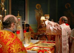 Человек — священник творения (К проблеме экологии), Митрополит Пергамский Иоанн (Зизиулас)