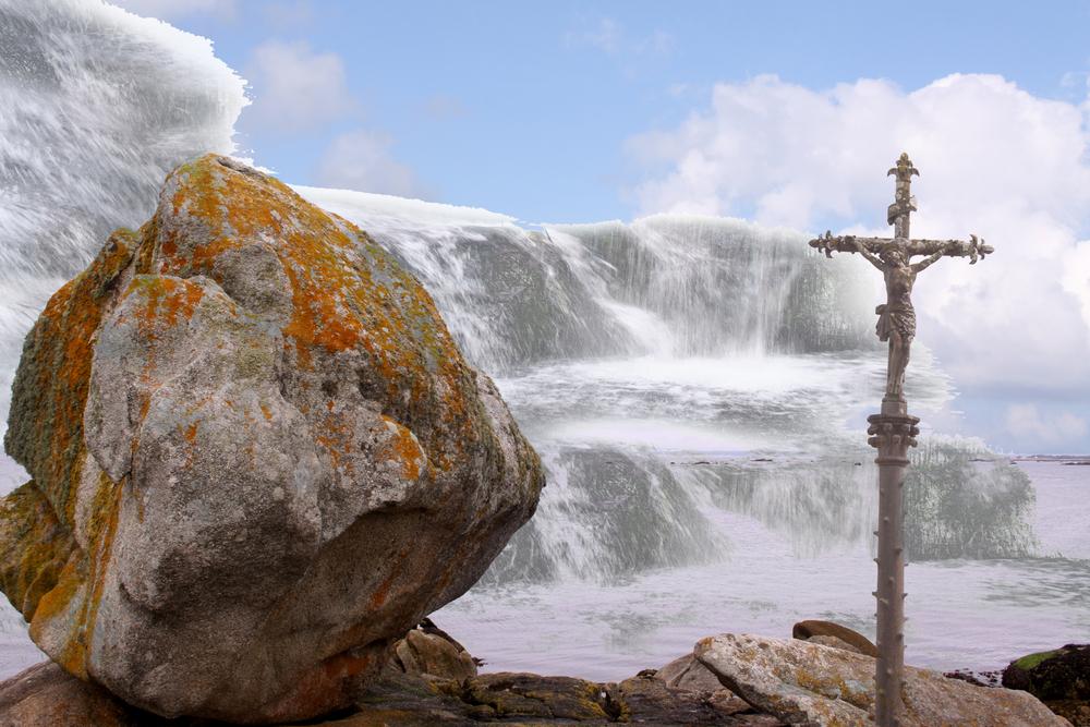 Христианство и проблемы экологии, Джон Ф. Хот