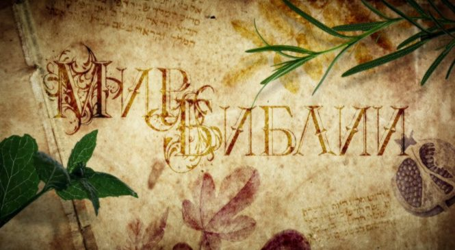 Док. сериал «Мир Библии 1. Библейские растения»